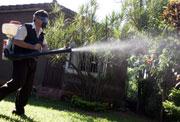 Fumigación en Paraguay por el brote de dengue. (EFE)