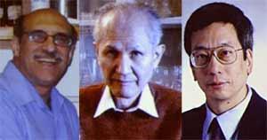 Los premiados Martin Chalfie, Osamu Shimomura y Roger Tsien. (Fotos: Reuters)