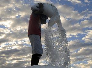 Producción de sal en Honduras (Foto: Gustavo Amador | EFE)