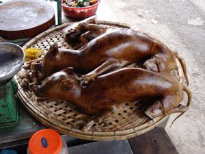 Carne de perro lista para consumir en un mercado de Hanoi. (Foto: Heiman Wertheim)