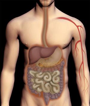 transplante de pancreas diabetes tipo 1