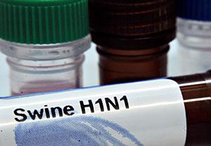 Una muestra del virus H1N1. (Foto: AFP | Leon Neal)
