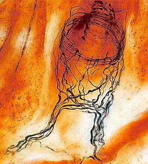 Una de las imágenes premiadas en 2009 por la Fundación Wellcome