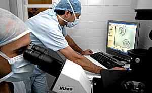 Dos especialistas realizan un tratamiento de fertilización. (Foto: El Mundo)
