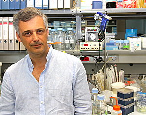 Luis Serrano posa en su laboratorio (Foto: Christian Maury)