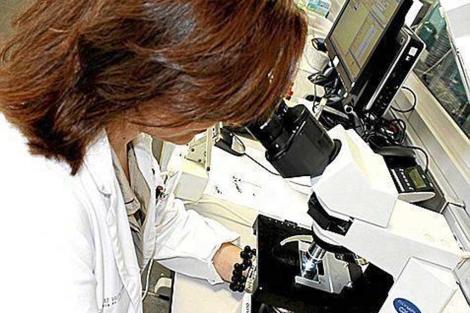 Una técnico de laboratorio.   El Mundo