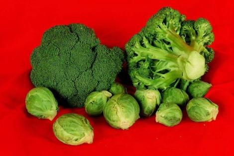 Este vegetal es rico en ácido fólico, vitaminas y hierro. | El Mundo