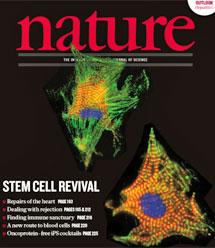 El estudio ha sido portada de la revista 'Nature'.