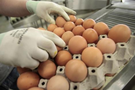 Un trabajador manipula huevos en la planta de alimentos orgánicos. | Reuters