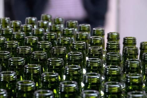 Aceite de oliva: un año de buena cosecha