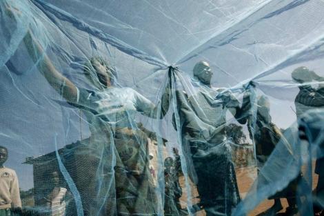 Niños colocando una red antimosquitos, una herramienta contra la malaria.