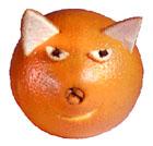 La gata naranja
