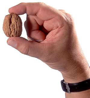 nuez para el cáncer de próstata