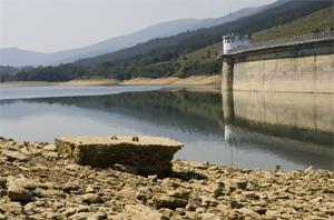 La necesidad de agua es patente en muchos pantanos. (Foto: MIGUEL CALVO)