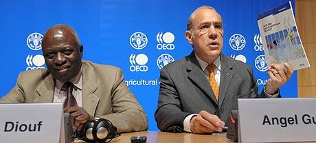 El director general de la FAO, Jacques Diouf (izq.) y el secretario general de la OCDE, Ángel Gurría. (Foto: AFP)
