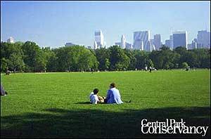 Central Park en verano. (Foto: centralparknyc.org)