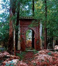 PERDIDO. Vista de la entrada al cementerio moro de Luarca (Asturias) cercada por los helechos. / ALI LMRABET