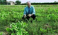 Rafael Blasco. El conseller valenciano de Territorio y Vivienda es el padre de este ambicioso proyecto.