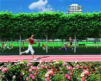 El proyecto cuenta con amplios espacios para la práctica de todo tipo de deportes: desde los simples paseos por sus avenidas a circuitos para bicicletas, un campo de fútbol o una pista de atletismo.