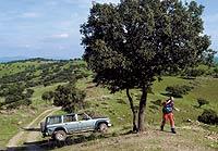 La cobertura móvil llega ya a los lugares más recónditos de la geografía española.