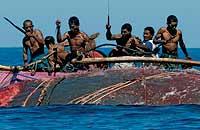 Los pescadores rematan al cetáceo a cuchilladas.