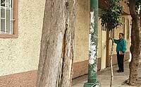 CASA DOMASCO. Parece una casa más de México D. F., pero es uno de los tres hogares mexicanos para curas adictos. / J. GARCÍA