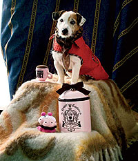 Campestre. Trench rojo Poppy´s Corner Shop, 89 euros. Pañuelo Louis Vuitton, 195 euros. Manta de Loewe, 290 euros. Pastel y taza de Juicy Couture, 25 euros cada uno. Tarro de galletas de Juicy Couture, 79 euros.