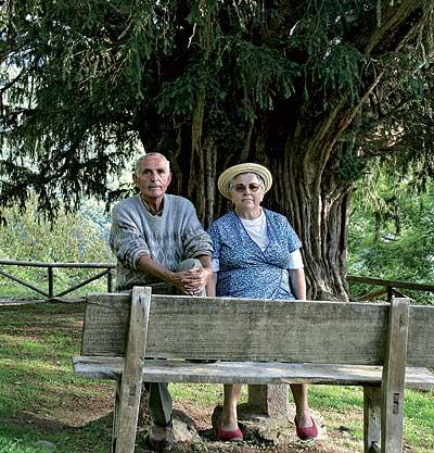 TODA UNA VIDA. Silvino y Georgina a la sombra del tejo más antiguo de Europa, un símbolo de Bermiego, su pueblo natal.
