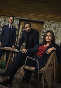 Ley y Orden: Unidad de Víctimas Especiales | Programación TV