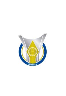 Resumen liga brasileña