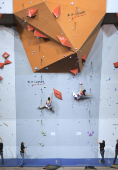Mundial de escalada