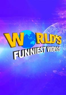 Los vídeos más divertidos del mundo