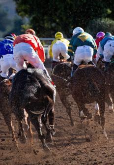 Circuito Nacional de carreras de caballos